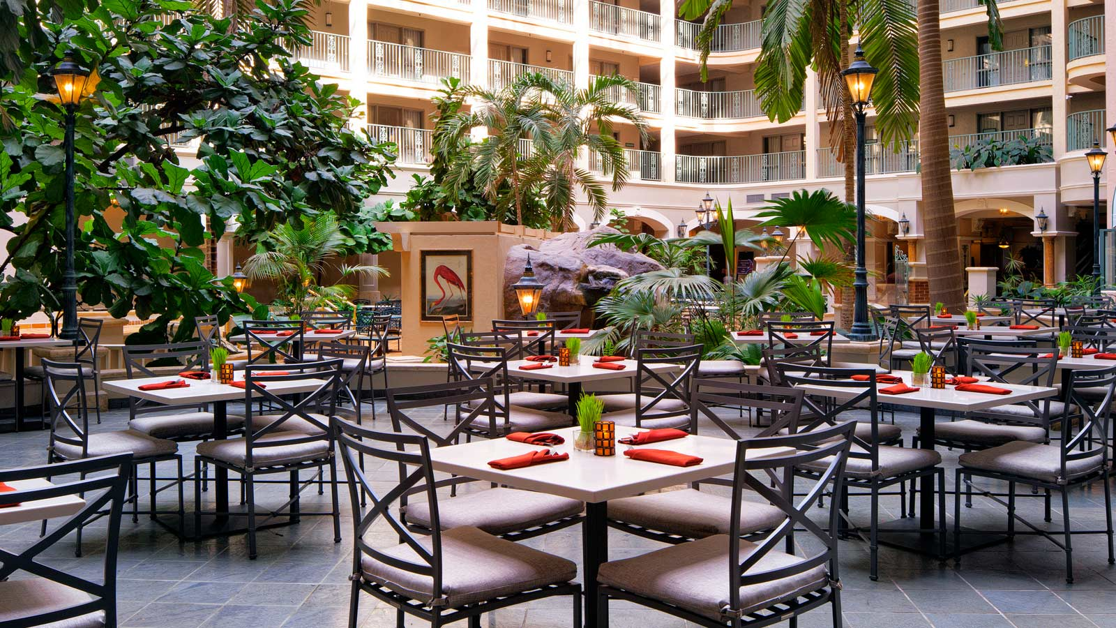 Terrace 555 Restaurant & Bar at Sheraton Suites Fort Lauderdale at Cypress Creek